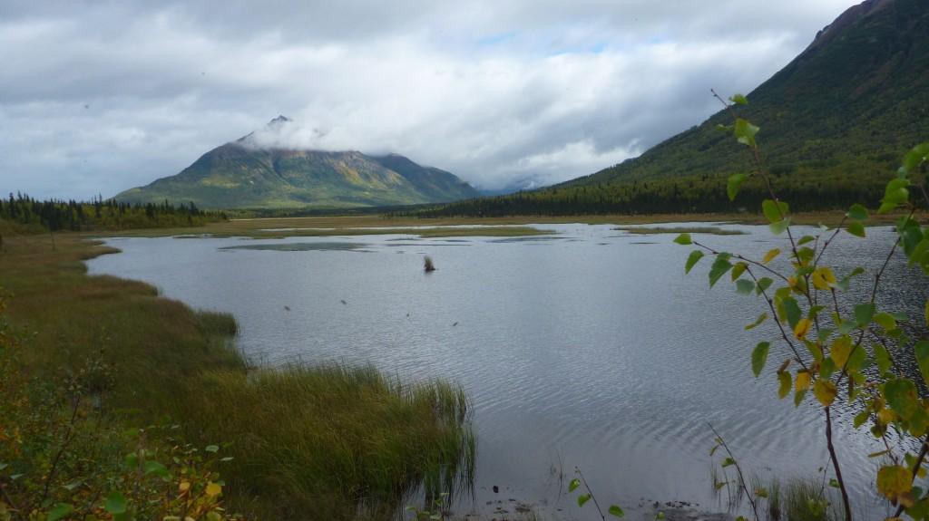 Pond Photo-2